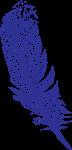 Eagle_Gala_feather-01